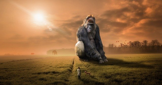 Regional Banks and Credit Unions